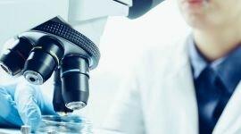 Нормозооспермия: заключение спермограммы