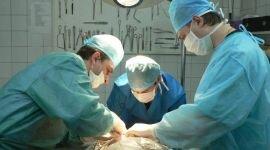 Удаление простаты при раке: операция и реабилитация