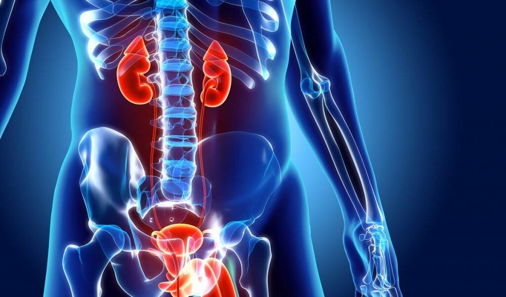 Заболевание мочеполовой системы у мужчин